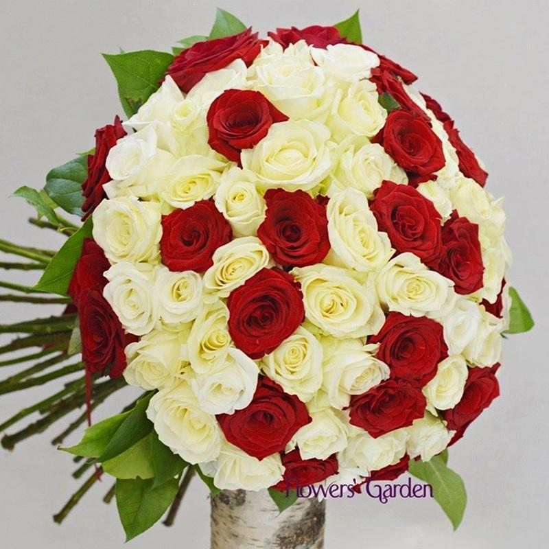 Alb Si Rosu Buchet Cu 51 Trandafiri Rosii Si Albi Flowers Garden